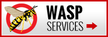 Wasp Services
